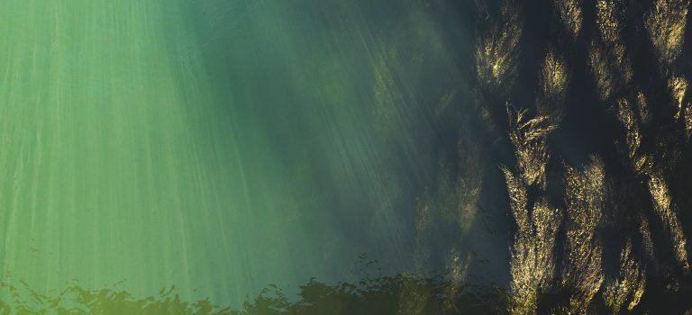 podwodny swiat